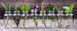 piante usate in cosmetica